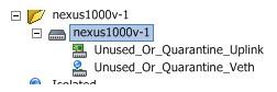 nexus-1000v